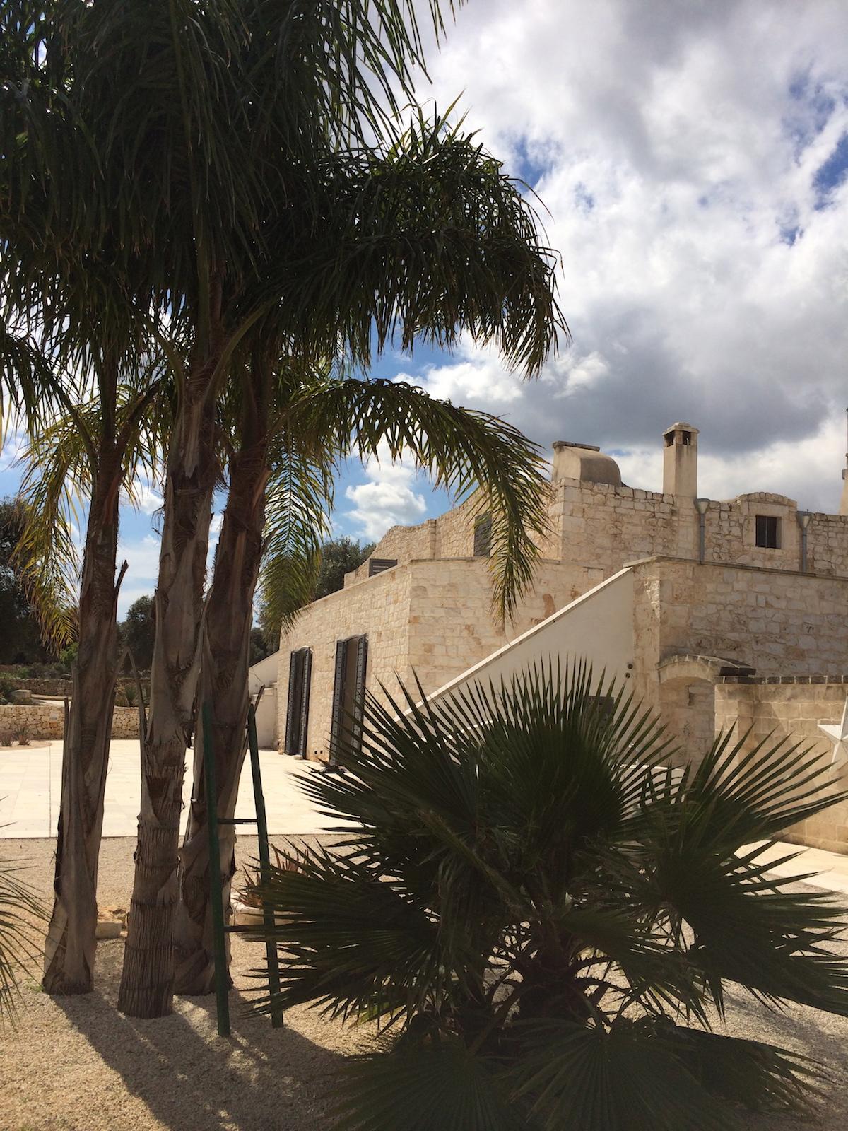 Villa and palm tree